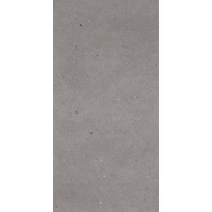 Dallage en céramique Collection Fjord Teinte Grey Fjord