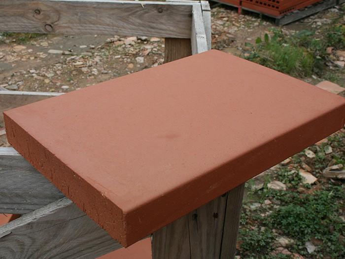 Brique Pleine Dessus de Mur / Foraine 40x28x5cm Rosé-Rouge